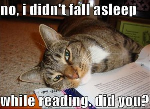 no-i-didnt-fall-asleep-while-reading-cat-300x218