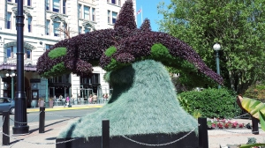 "City of Victoria annual topiary - mother orca and baby: ""Surfacing"""